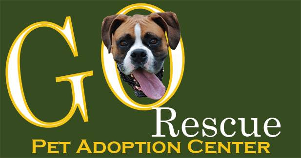 Go Rescue Pet Adoption Center